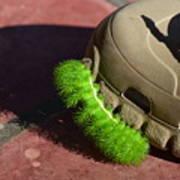Neon Geen Caterpillar Loves Crocs Poster