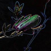 Neon Tulip Tree 5090 Poster