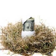 Nest Egg Poster