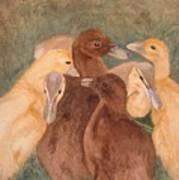 Nestlings.  Ducklings Huddled Together Poster