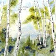 New England Birches Poster