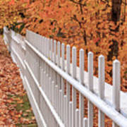 New England White Picket Fence With Fall Foliage Poster