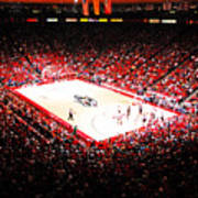 New Mexico Lobos University Arena Poster