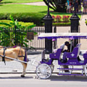 New Orleans Royal Carriage Poster