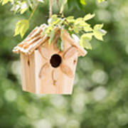 New Wooden Birdhouse Hanging On Tree Branch Outdoors  Poster