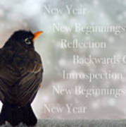 New Years Card Poster