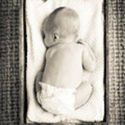 Newborn Baby In Crate Filtered Poster
