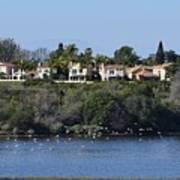 Newport Estuary Looking Across At Homes I Poster