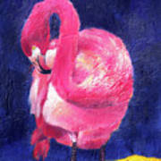 Night Flamingo Poster