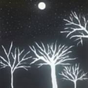 Night Of Lights Poster