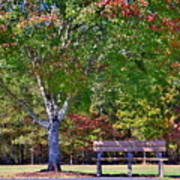 Ninety Six National Historic Site Bench In Autumn  Poster