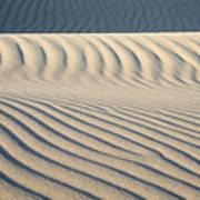 Nipomo Dunes Poster by Ron Hoggard