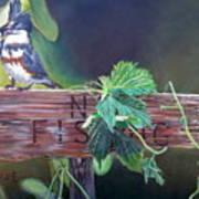 No Fishing Poster