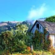 Northern California Cottage Poster