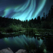 Northern Lights Over Lily Pond Poster