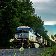 Ns 62w With Blurred Flowers Poster