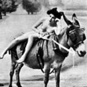 Nude And Donkey, C1900 Poster
