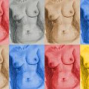 Nude Female Torso - Ppsfn-0002-montage-03 Poster