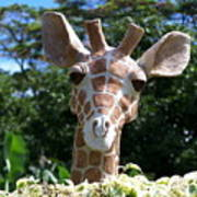 Oahu Giraffe Poster