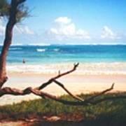 Oahu North Shore Poster