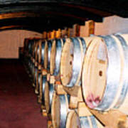Oak Red Wine Barrels Poster