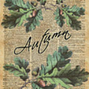 Oak Tree Leaves And Acorns, Autumn Dictionary Art Poster