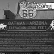 Oatman Arizona Poster