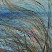 Ocean Grasses In The Wind Poster
