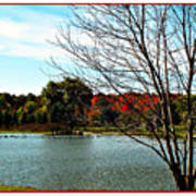 Ohio Duck Pond Poster