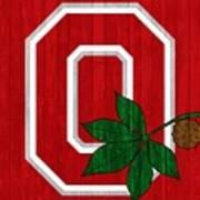 Ohio State Wood Door Poster