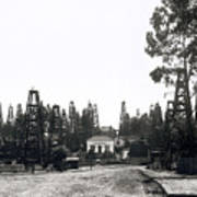 Oil Field Residential Los Angeles C. 1901 Poster
