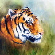 Oil Painting Of A Bright Mighty Tiger Head On A Soft Toned Abstr Poster