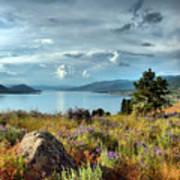 Okanagan Lake In The Spring Poster