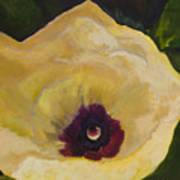 Okra Flower Poster