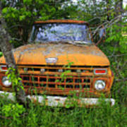 Old Abandoned Ford Truck In The Forest Poster