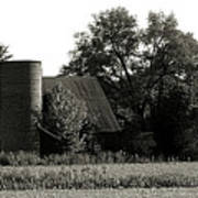 Old Barn Outbuildings And Silo  Poster