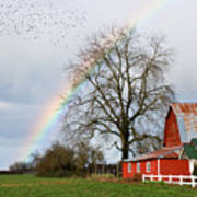 Old Barn Rainbow Poster