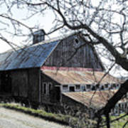 Old Barn With Tree Watercolor Poster