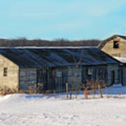 Old Barns And Snow Poster