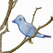 Old Bluebird Ornament Poster