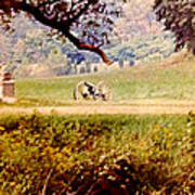 Old Cannon At Gettysburg Poster