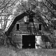 Old Cedar Barn Poster