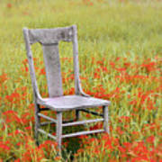Old Chair In Wildflowers Poster