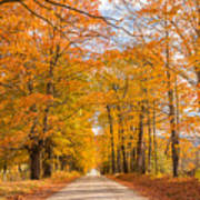 Old Coach Road Autumn Poster