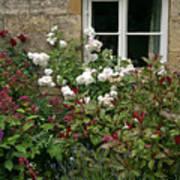 Old English Garden Poster