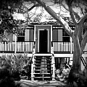 Old Florida Cottage Poster
