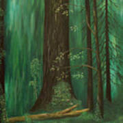 Old Growth Priest Point Park Poster