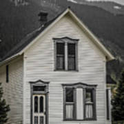 Old House And Dandelions Poster