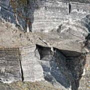 Old Rock Background Poster