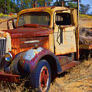 Old Rusting Flatbed Truck Poster